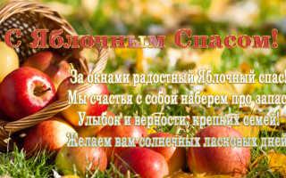 Поздравления мужчине/женщине с яблочным спасом