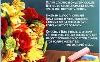 Стихи поздравления с днем учителя