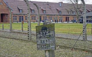 Поздравления с днем освобождения узников фашистских концлагерей